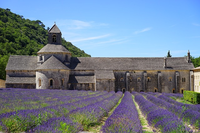 levandule u kláštera